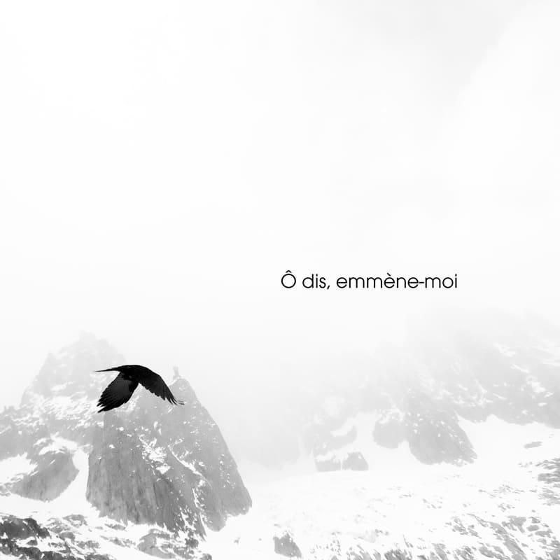 barbara l'aigle noir chanson française