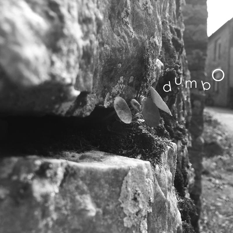 reflexiongraphique-dumbo